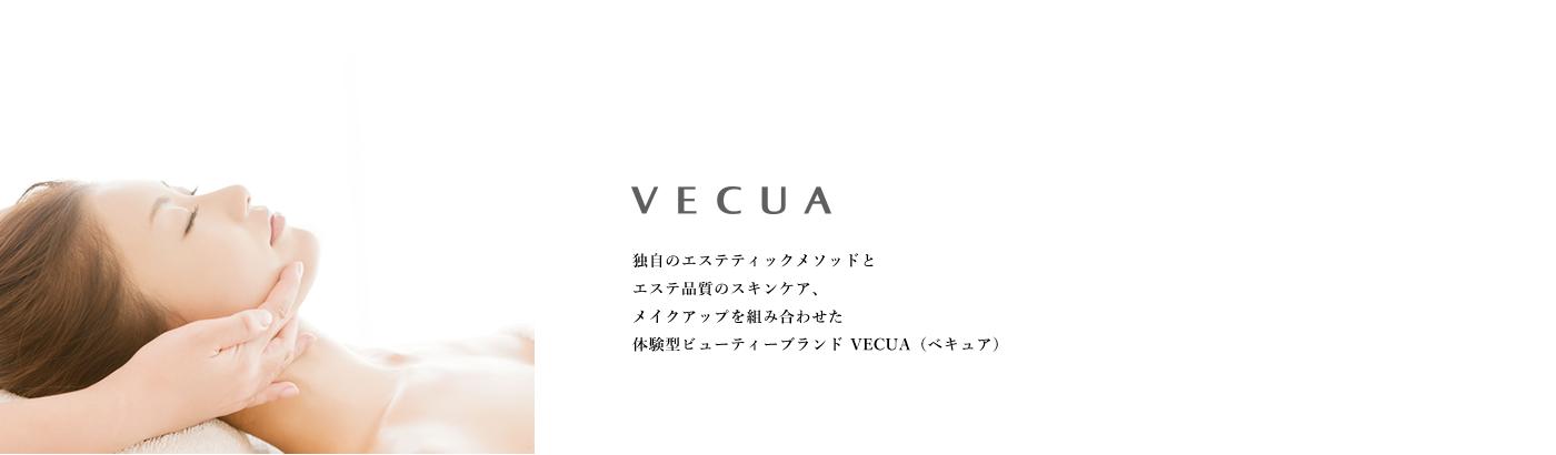 bg-header-vecua
